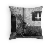 Door and window Throw Pillow