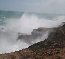 Wild seas. by elphonline