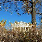 supreme court by Tracey Hampton