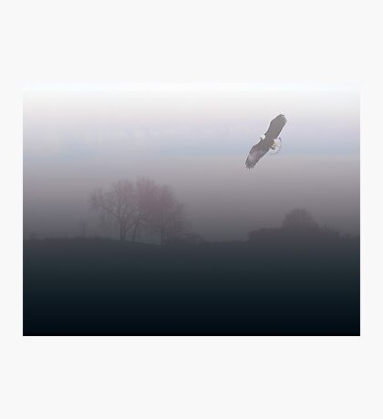 Flying in Fog Photographic Print