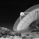 parkes observatory by Rob Smith