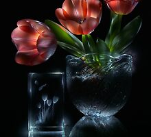 Tulips - lightpainted still life by Alexey Kljatov