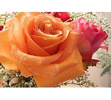 Joyful Roses - 3     ^ Photographic Print