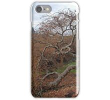 Twisted Tree at Biltmore. iPhone Case/Skin