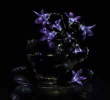 Bluebells - lightpainted still life by Alexey Kljatov