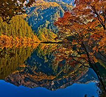 Autumn Reflection in Mirror Lake, Jiuzhaigou by Daniel H Chui
