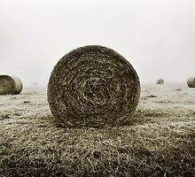 Haystacks  by James  Archibald