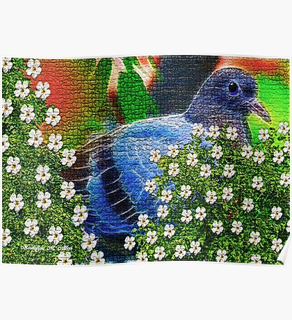 ~ THE MOSAIC DOVE ~ Poster