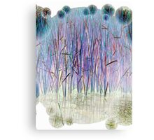 Light Blue Reeds-Available As Art Prints-Mugs,Cases,Duvets,T Shirts,Stickers,etc Canvas Print