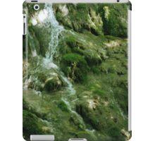Falls at the Natural Bridge iPad Case/Skin
