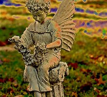 For Trena...our Redbubble angel;} by Barbara Gerstner