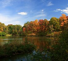 Autumn At The Lake by John Absher