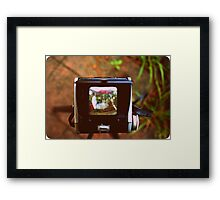 Through the Viewfinder Framed Print