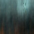 Pond by Mary Ann Reilly