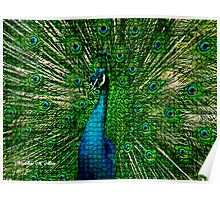 ~ ROYAL MOSAIC PEACOCK ~ Poster