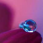 Crystal Ball  by Sherstin Schwartz