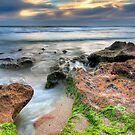 Portsea Beach by Alex Stojan