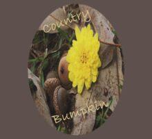 Country Bumpkin by Terri Chandler