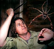 Spiders! by Damian