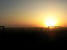 Another Prairie Sunset by Leanna Lomanski