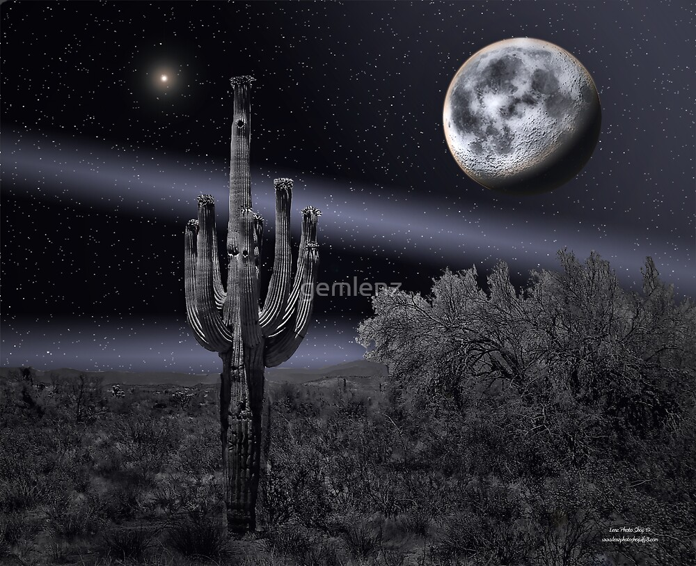 Cactus Moon-2 by George Lenz
