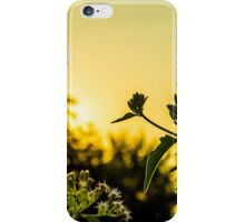 Sunset time iPhone Case/Skin