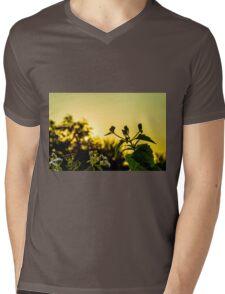 Sunset time Mens V-Neck T-Shirt
