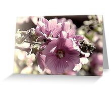 Summer Flowers................ Greeting Card