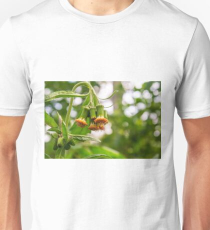 Withered Asteraceae Unisex T-Shirt