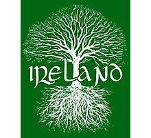 Ireland - Tree of Life Photographic Print