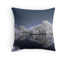 IR Lake Throw Pillow