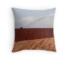 Irrigation Throw Pillow