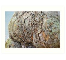 Nature's abstracts Art Print