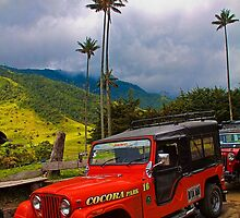 Columbia. Cocora Valley. Old Jeep. by vadim19