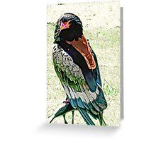Bateleur Eagle Greeting Card