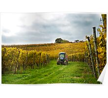 Tractor in the Vineyard Poster