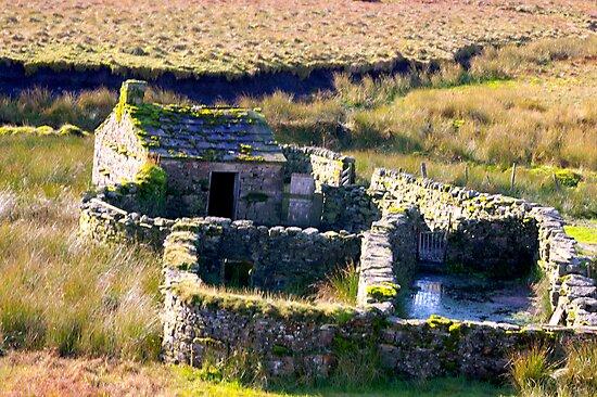 Shepherds House by Trevor Kersley