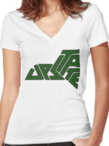 Upstate NY Vector Women's Fitted V-Neck T-Shirt