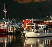 Petty Harbour by Brian Carey