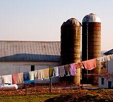 Amish Wash by bigtiny