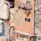 Rusty Door Latch by Pamela Jayne Smith