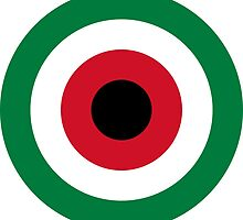Roundel of Kuwait Air Force  by abbeyz71