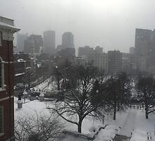 Wintry State House Window by grichuate