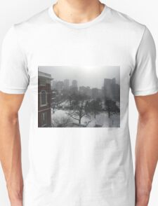 Wintry State House Window T-Shirt