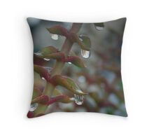 Waiting for the sun.. Throw Pillow