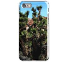 joshua tree at red rock iPhone Case/Skin