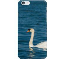Mute Swan with Dark Blue Water iPhone Case/Skin