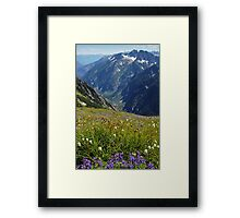 Summer Wildflowers and Mountains Framed Print