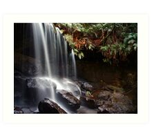 Spirit of the Bush - The Grotto, Fitzroy Falls, NSW Art Print
