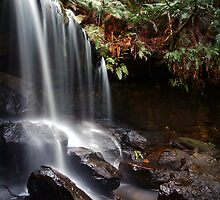 Spirit of the Bush - The Grotto, Fitzroy Falls, NSW by Malcolm Katon
